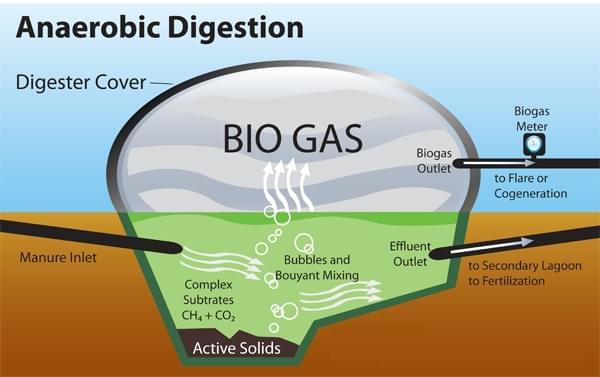 Cấu tạo hầm Biogas phủ bạt HDPE