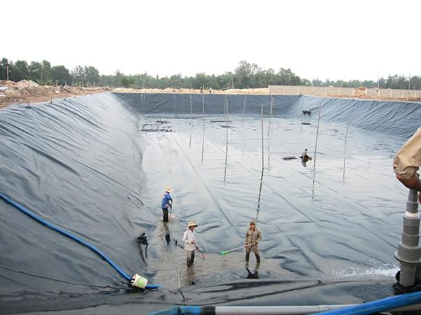 Ứng dụng màng HDPE lót đáy nuôi trồng thủy hải sản